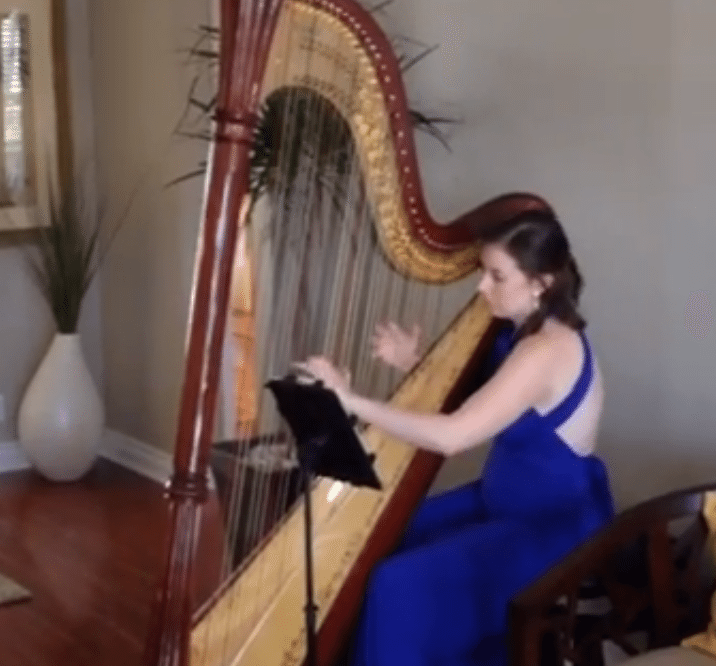 Harpist open houses vs. 'bucket list parties'