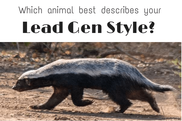 Are you the Honey Badger of Real Estate? Take this quiz to find out