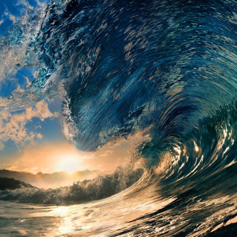 Tidal wave of new real estate agent websites taking shape