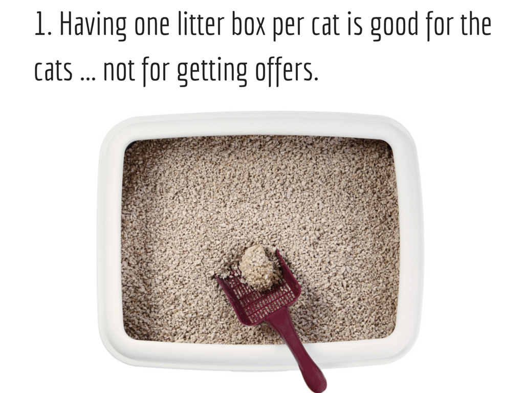 Litter box Background image via Shutterstock. Modified.