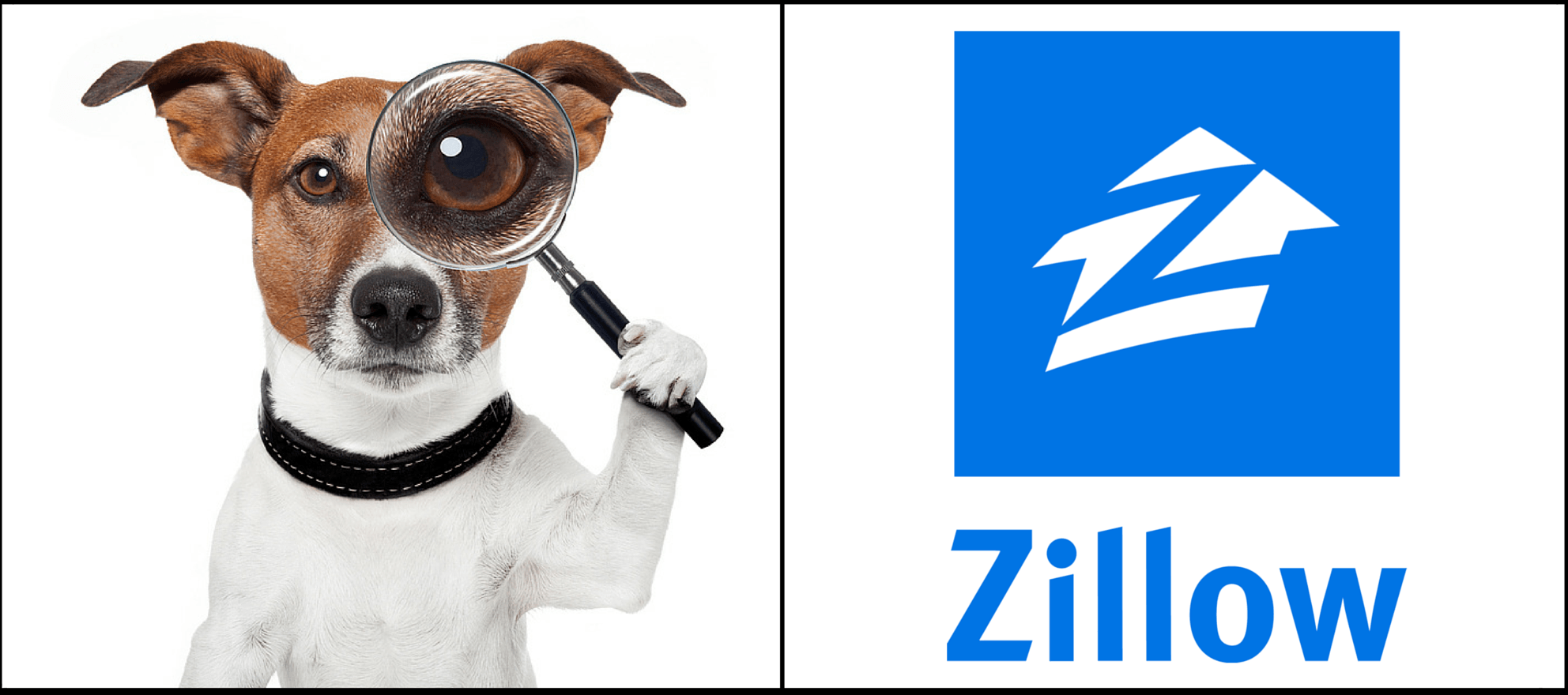Where did Zillow's demographic data go?