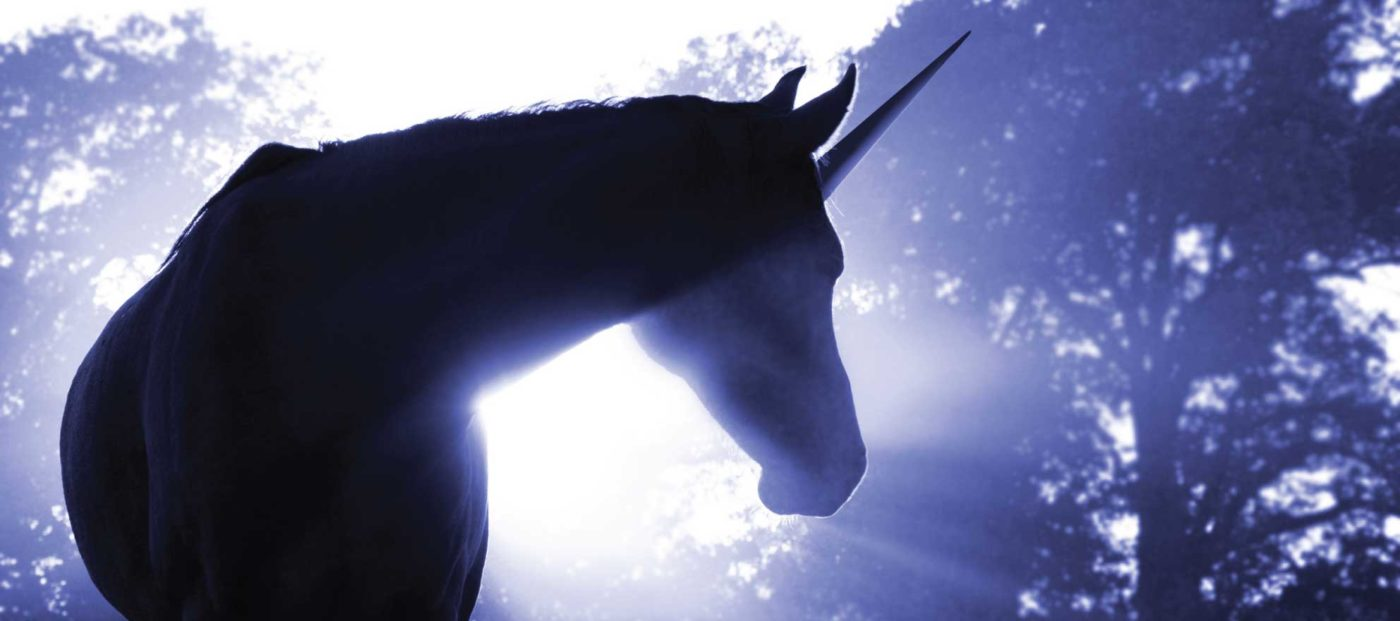 To be or not to be: a unicorn of real estate