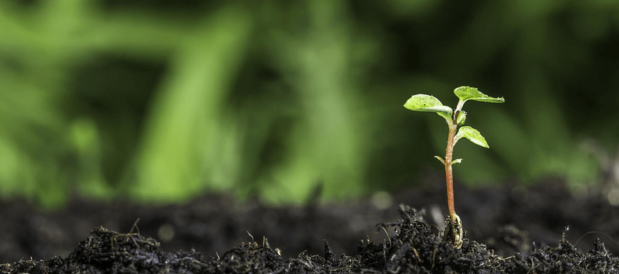 National broker portal initiative raising seed money