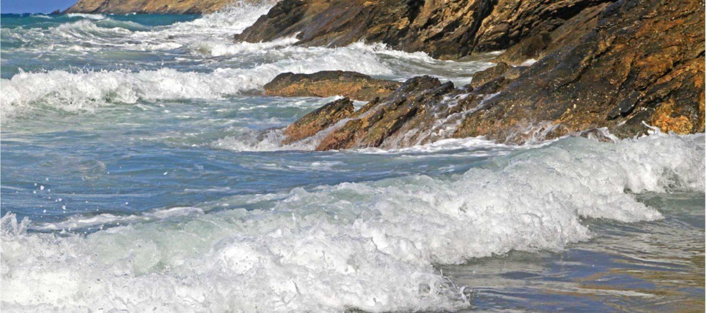 Rising tide but no tidal wave of new .realtor agent websites