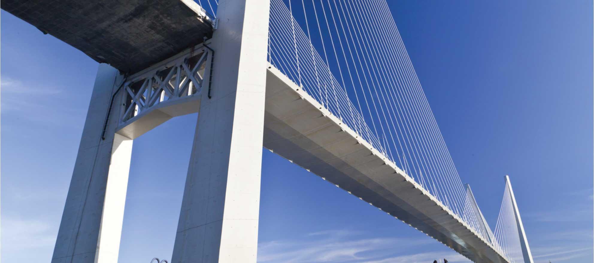 Online portal serves as marketing bridge for referral partners