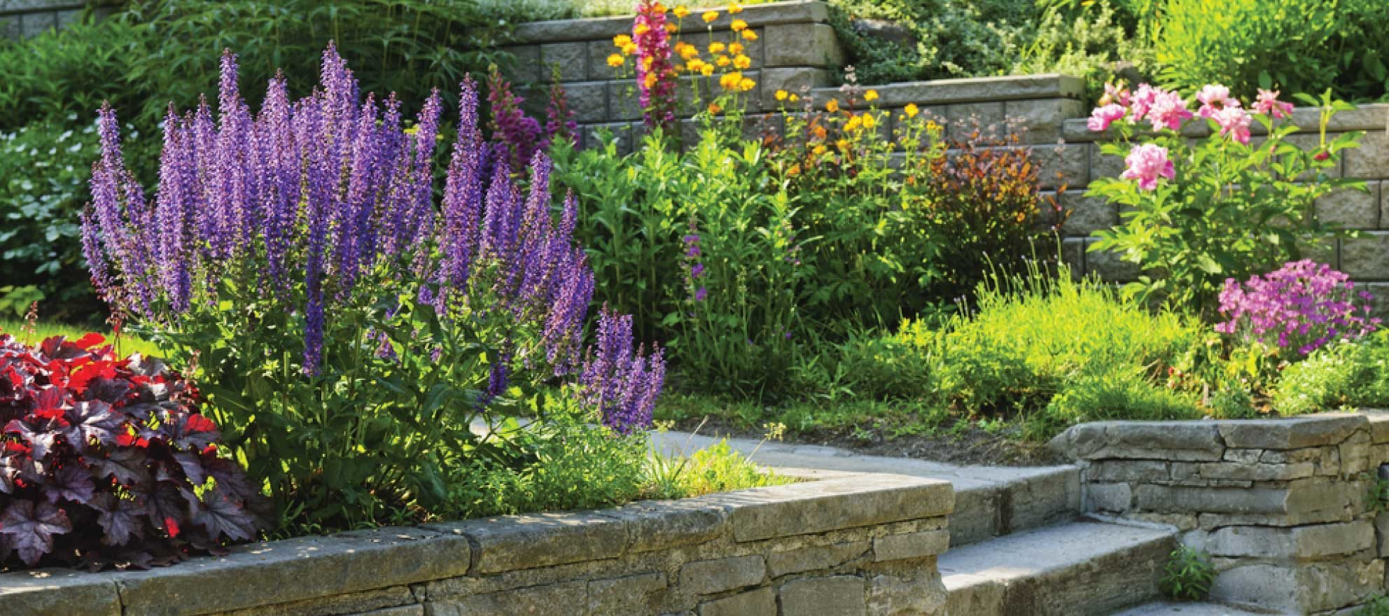 Trying to boost your listing's value? Add a garden