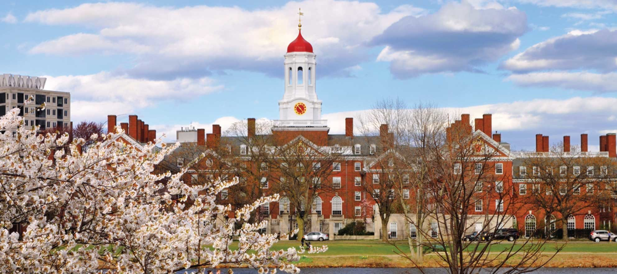 Harvard's annual housing report tells 'tale of 2 markets'