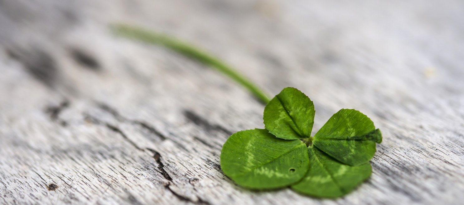 6 steps for letting go of luck and embracing success