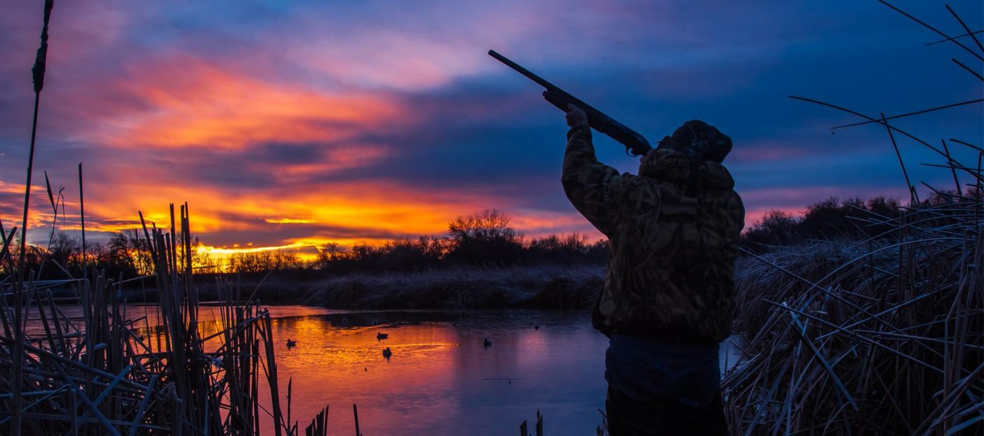 Opinion: You can take 'duck hunters' at face value -- but fancy words hide the truth