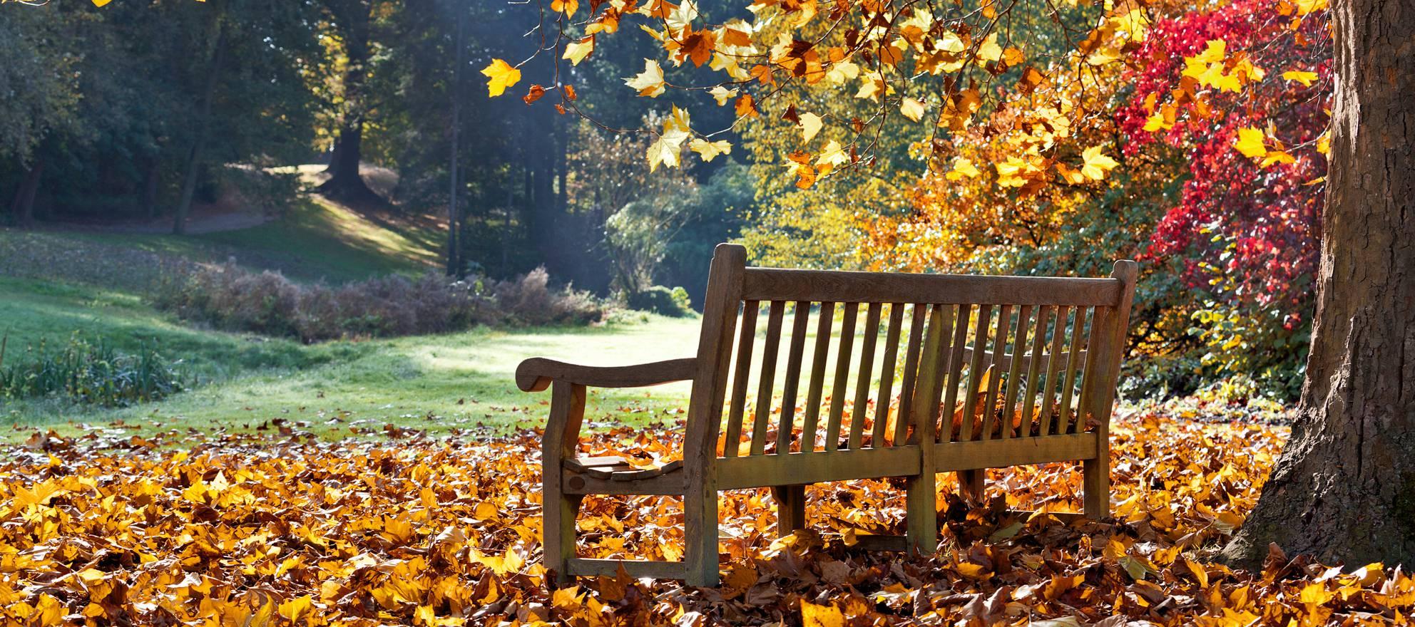 Podcast: Jonathan Smoke on emerging fall 2015 market trends