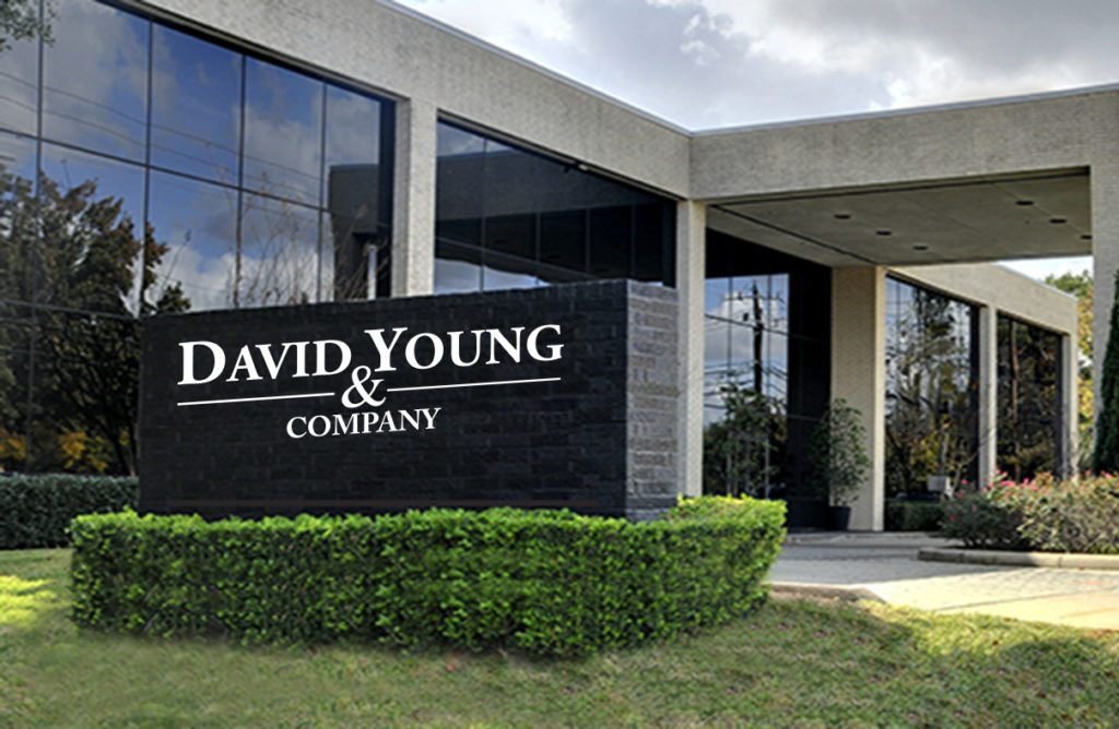 David Young and Company
