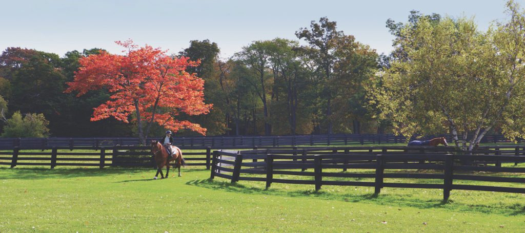 Luxury listing of the day: Equestrian paradise in Dutchess County, N.Y.
