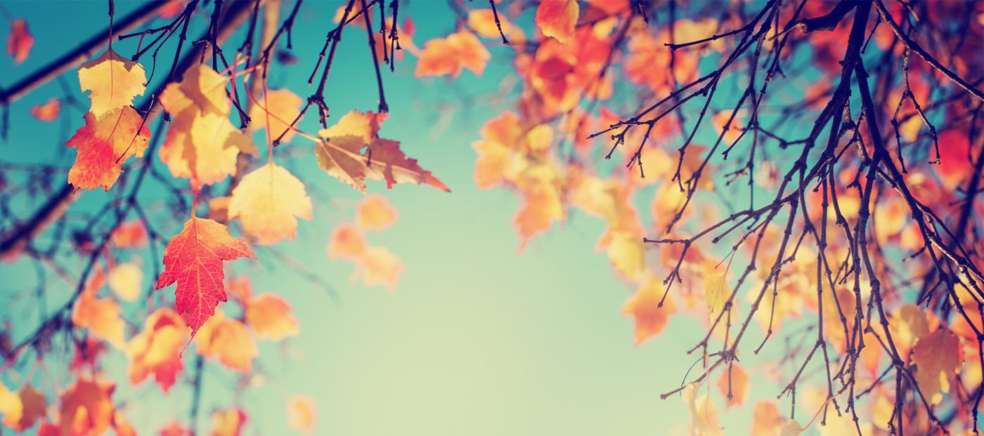 Fall is the new spring in real estate