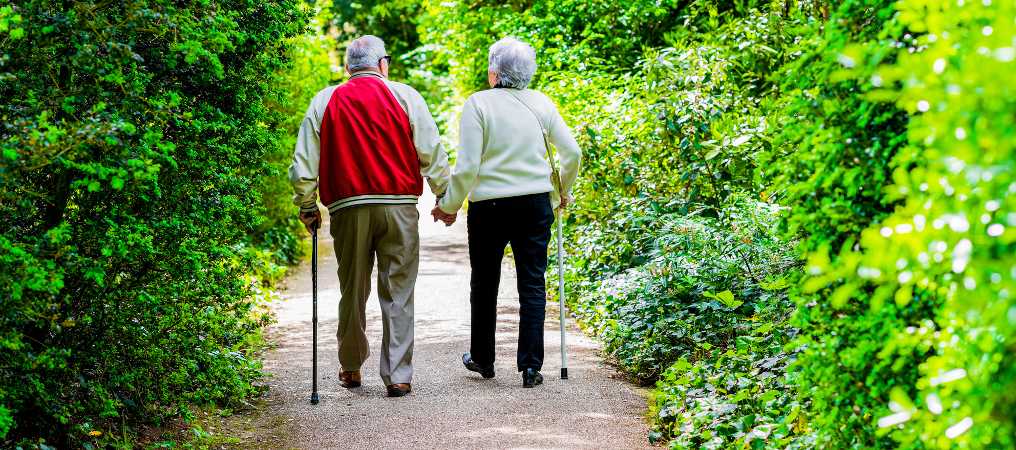 elderly homeowners