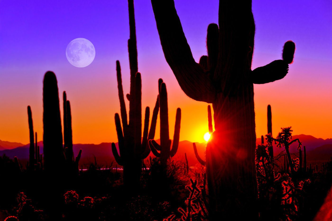 Why is Arizona cracking down on real estate licenses?