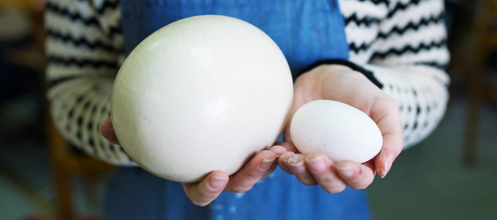 A woman holding a large egg and a small egg