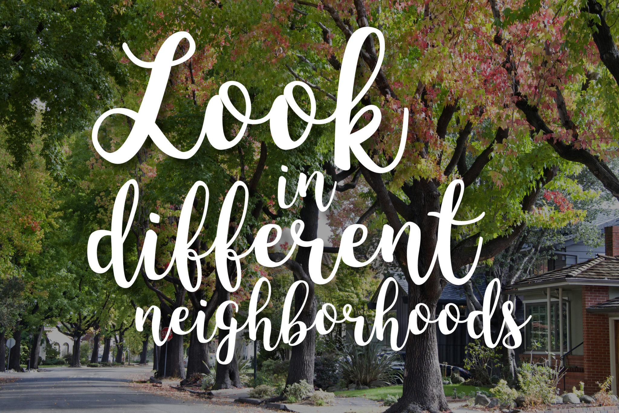 look-for-different-neighborhoods
