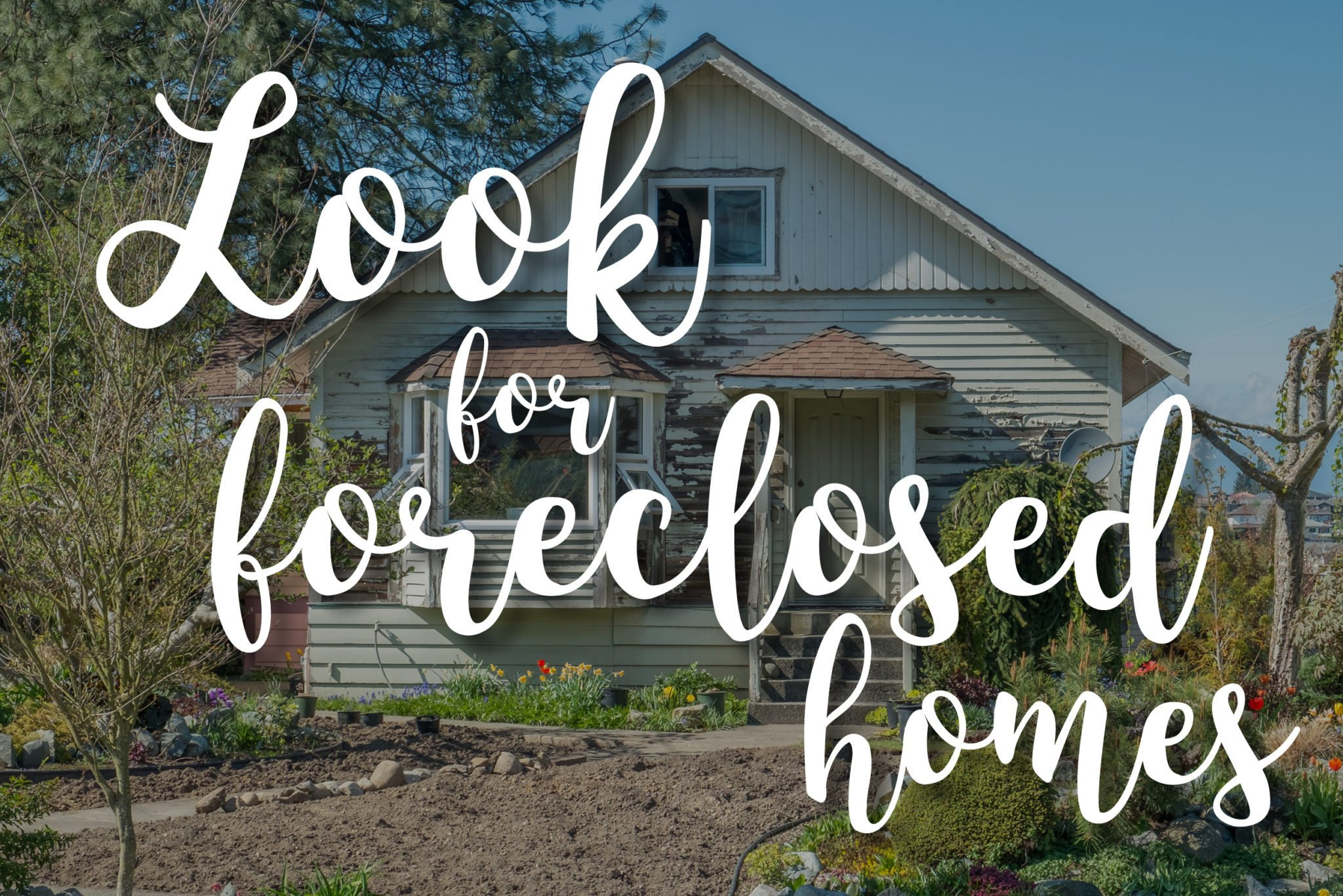 look-for-foreclosed-homes