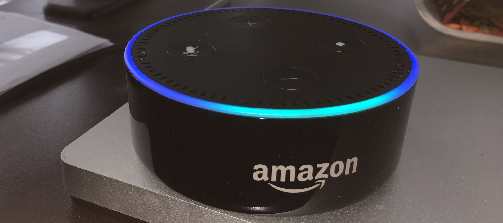 CRM LionDesk roars into voice-activated internet with skills for Amazon Echo
