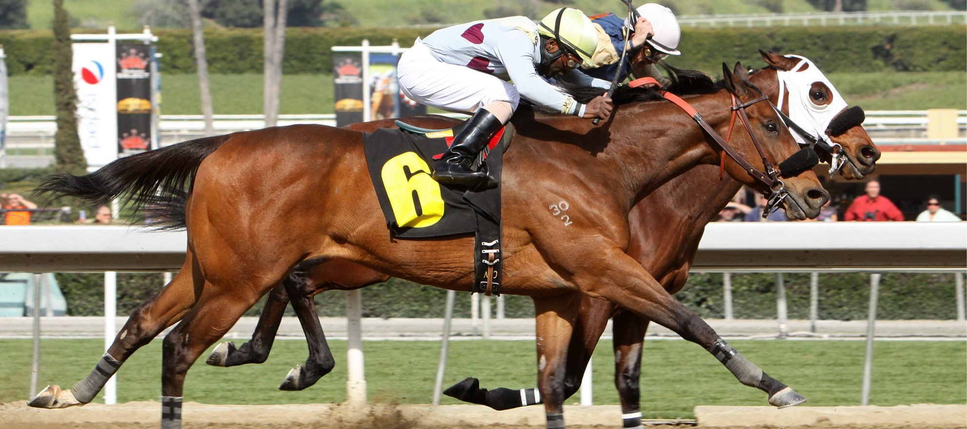 january 2017 real estate market reports