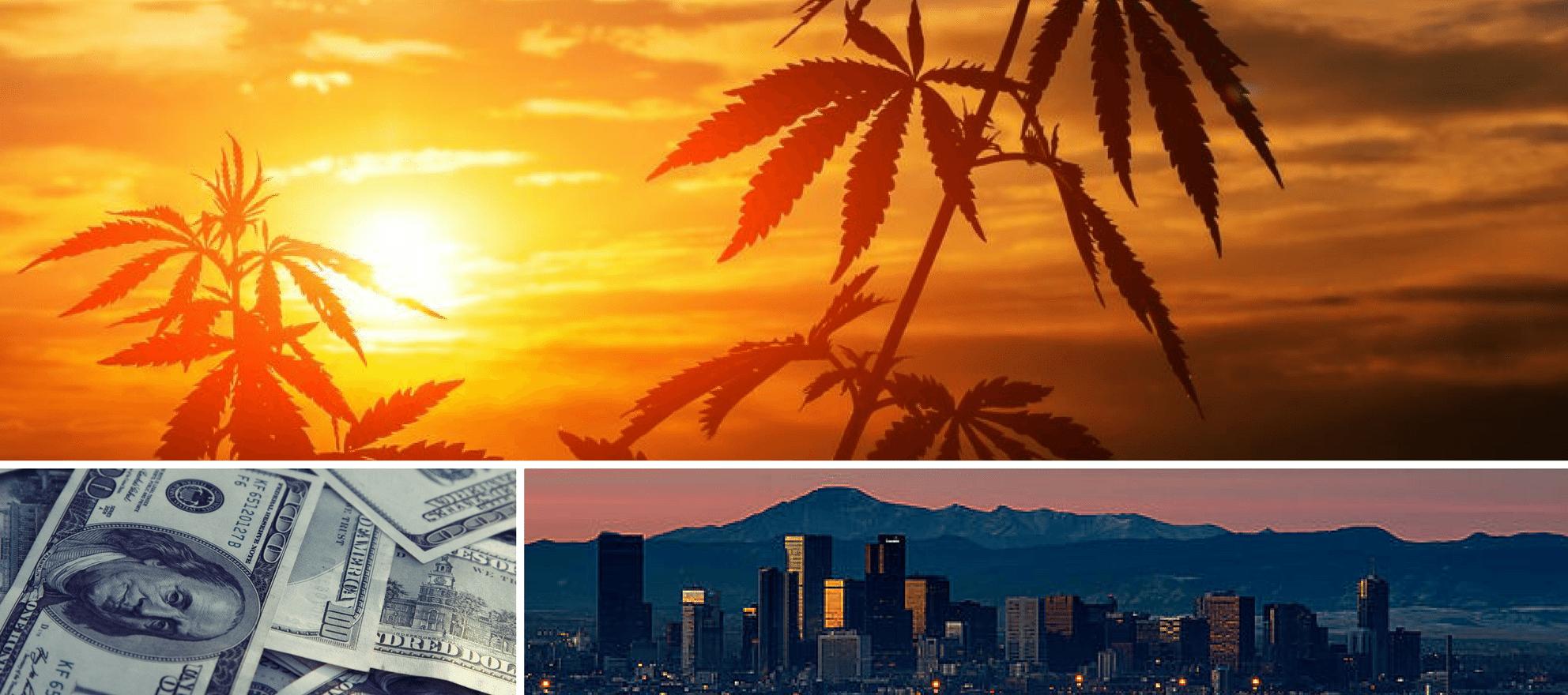 investing cannabis markets