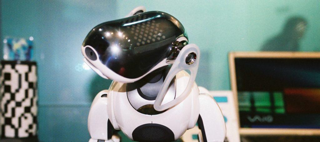 Sony robot dog