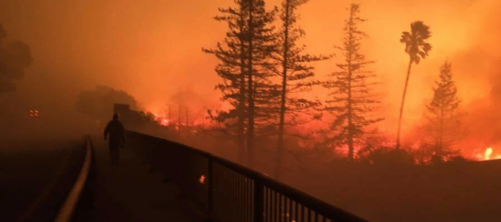california wildfire insurance