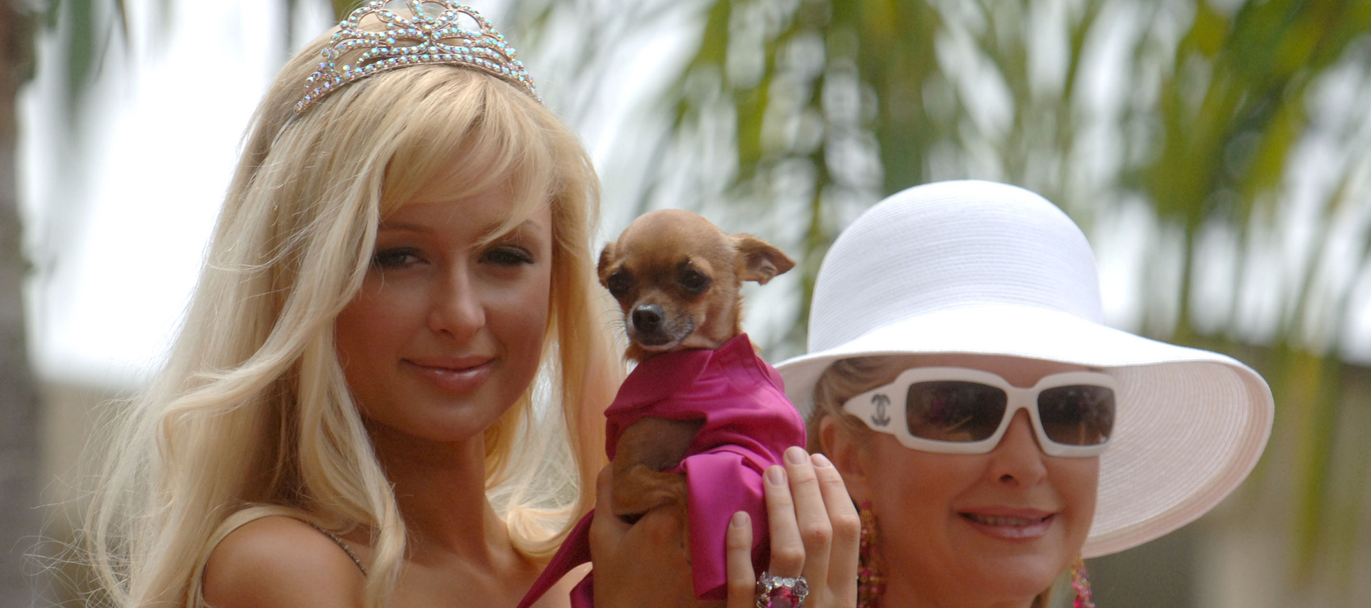 Paris Hilton helps real estate power couple recover stolen dog