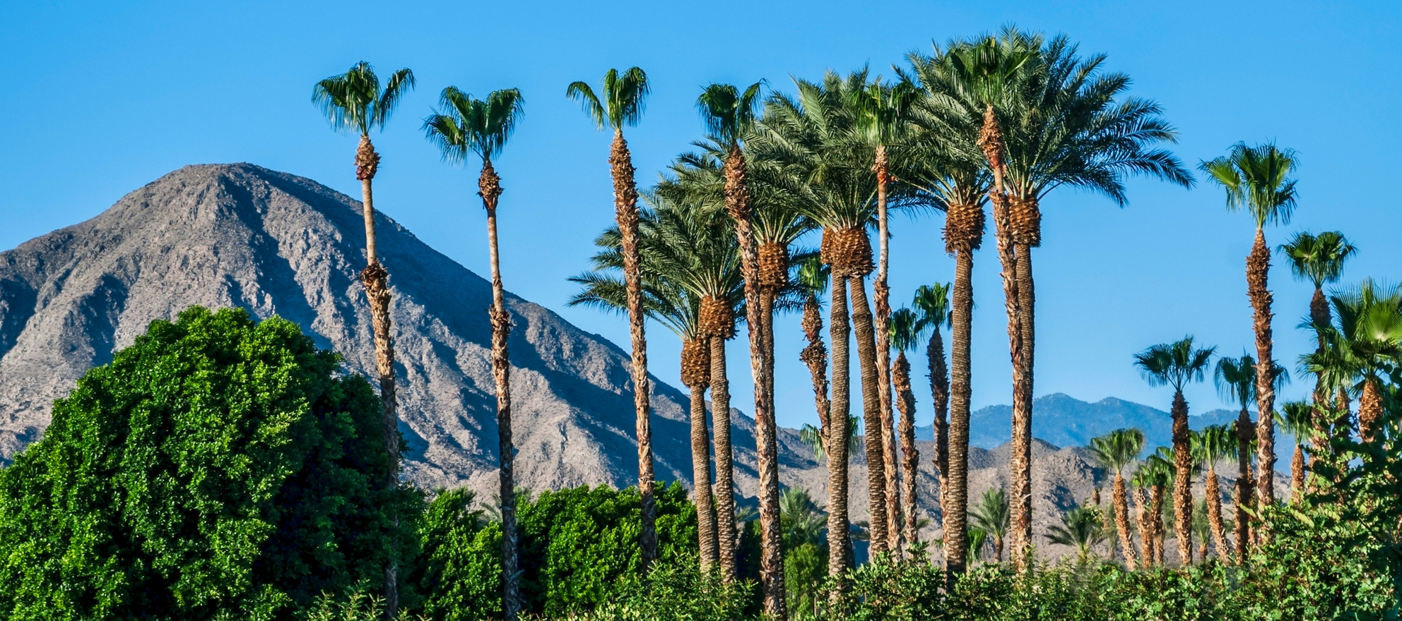 Real estate leaders gear up for radical meeting in the desert