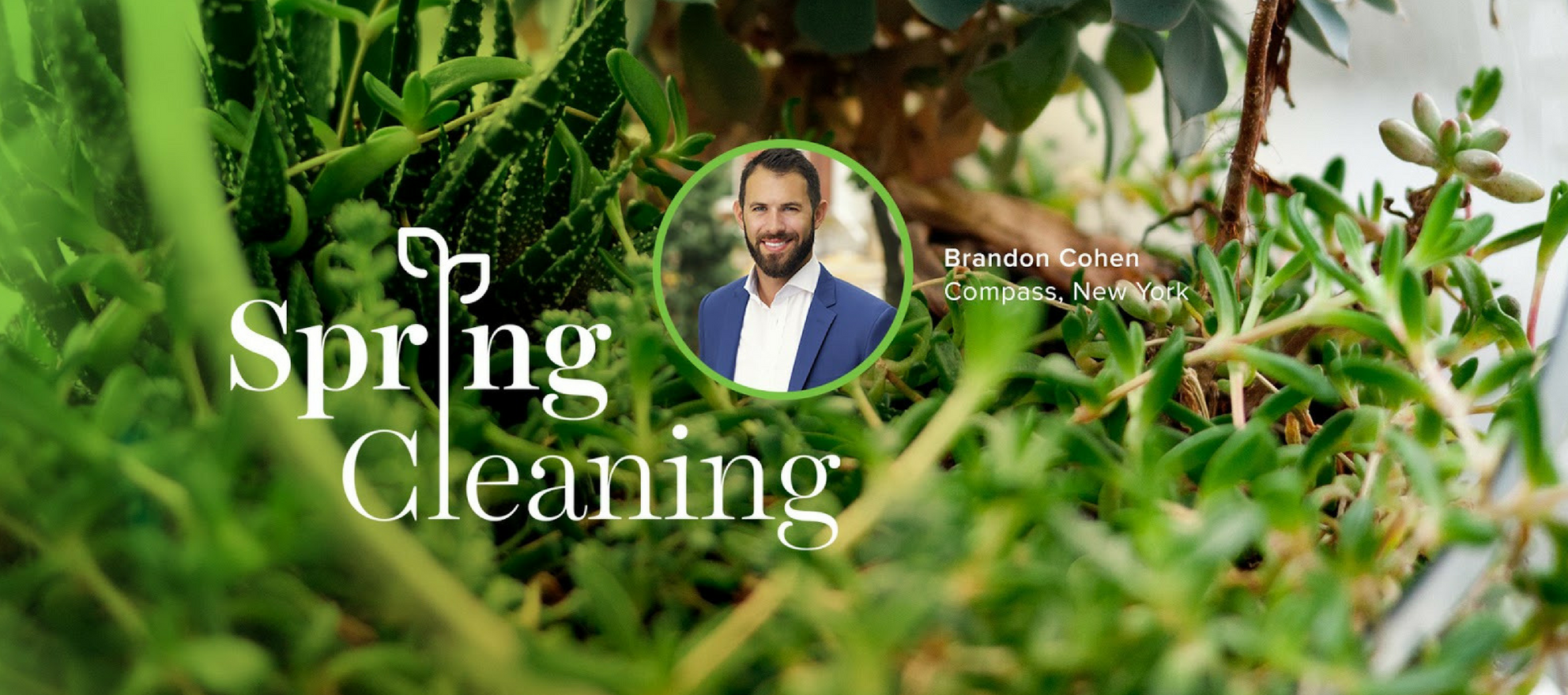 Spring cleaning, Spring Forward, Brandon Cohen
