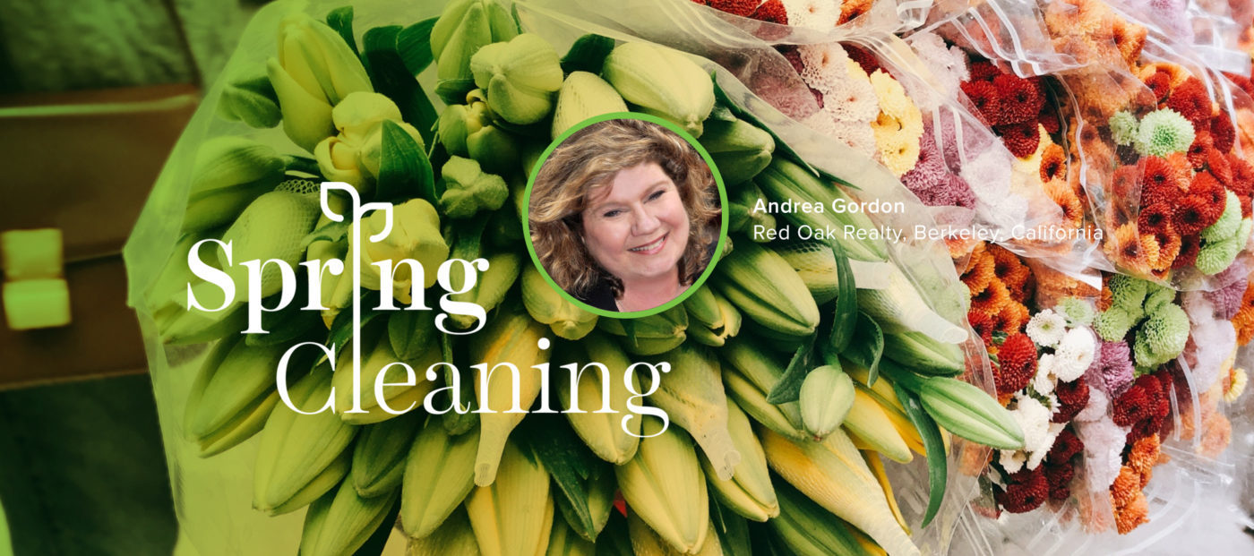 andrea gordon, spring cleaning, spring forward