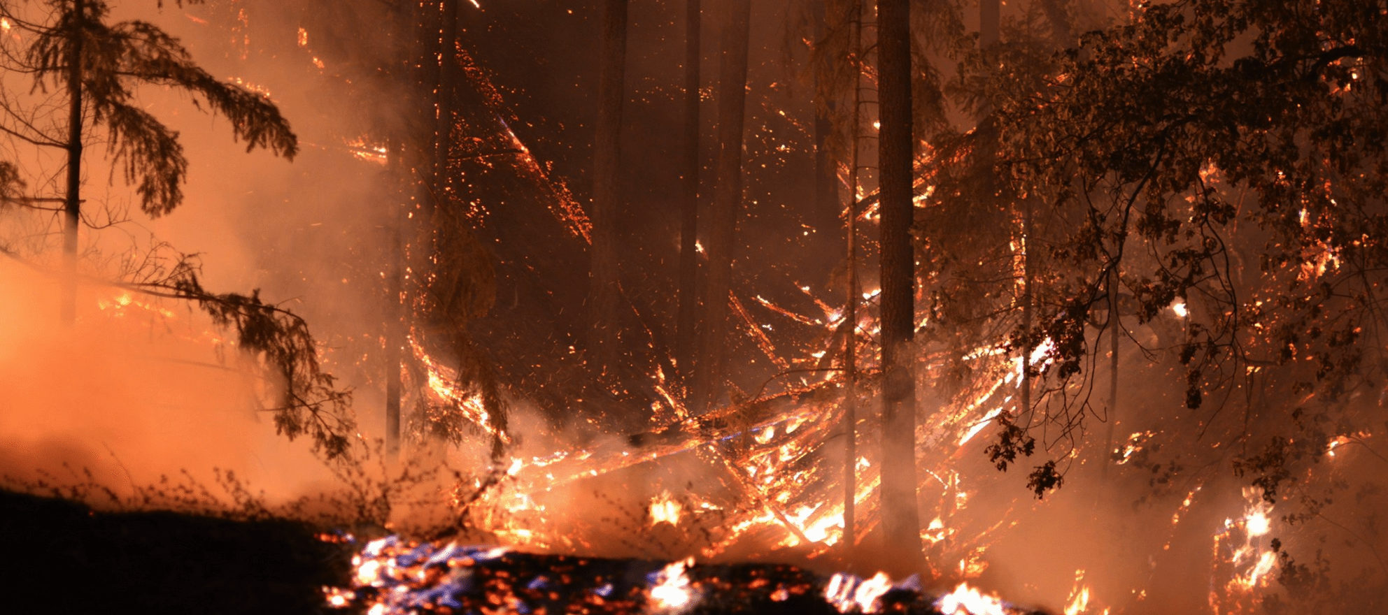 The California Association of Realtors is raising money for members impacted by wildfires