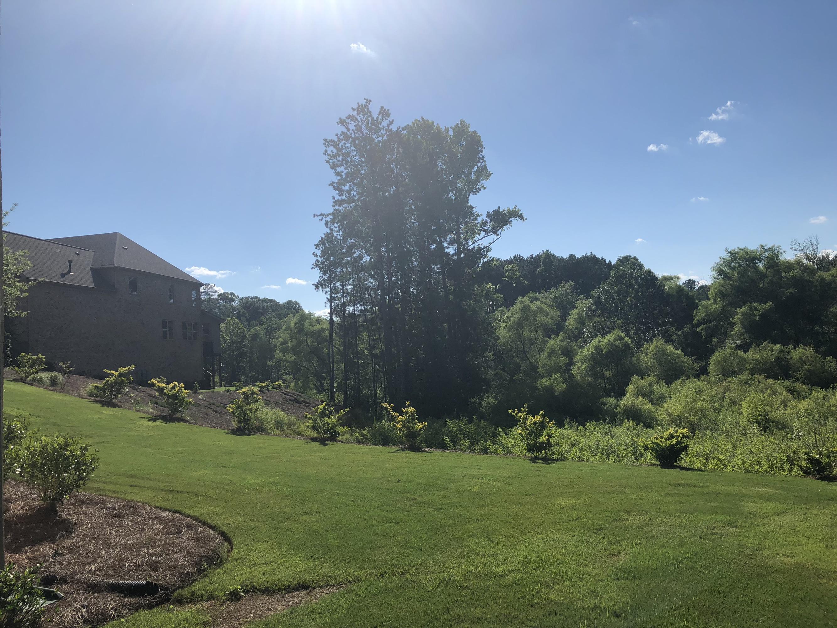 Lennar Amazon backyard
