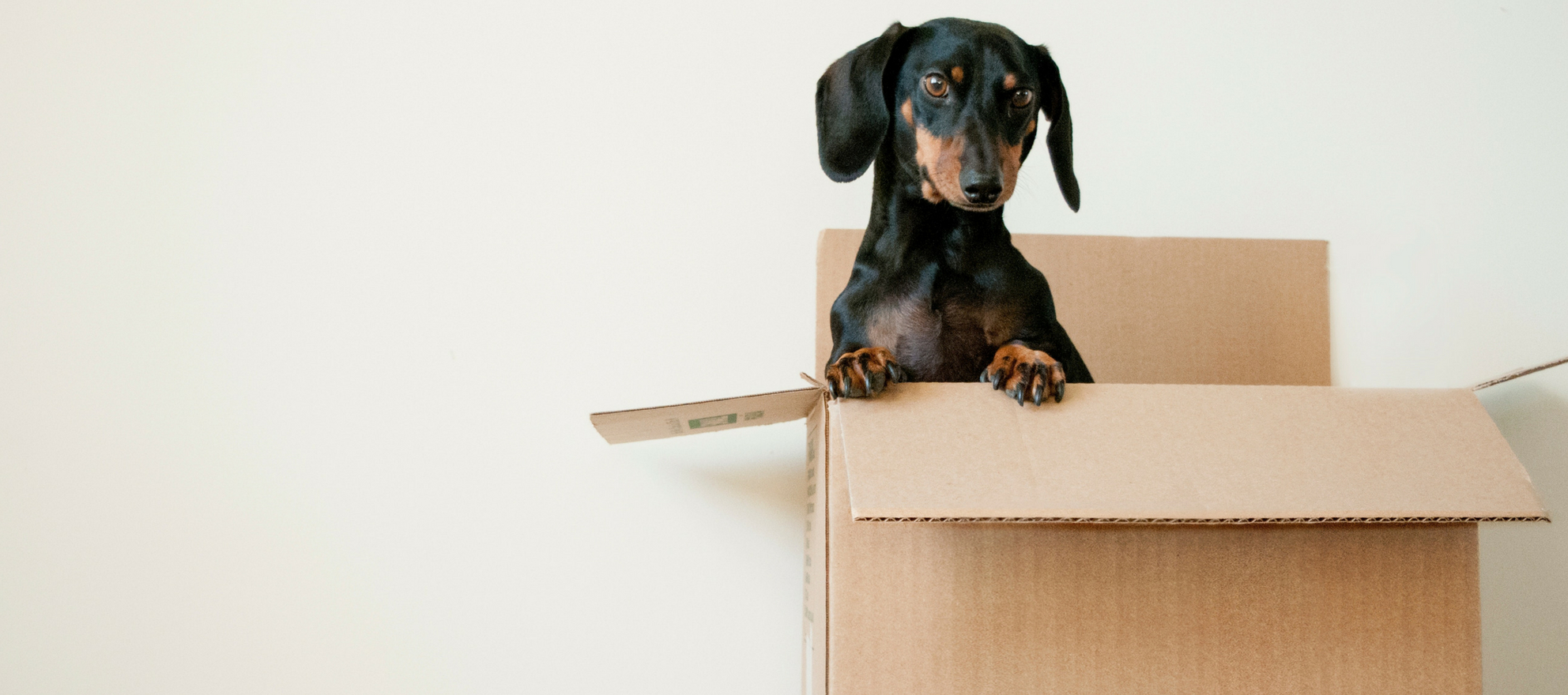 Moved, a home moving startup, closes $3.2 million funding round
