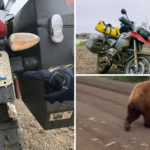 17,400 miles, 15 countries and 1 wild bear: A Re/Max agent's inspiring charity motorbike ride