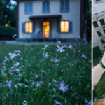 Lingering listing photos create conundrum for real estate agents