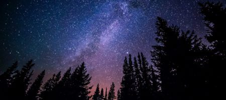 Constellation acquires Baynet World