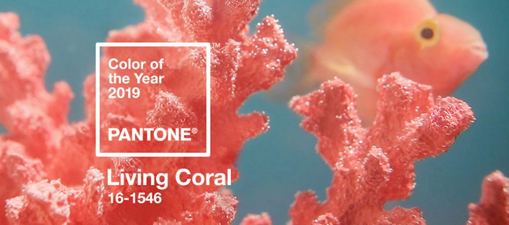 What do you think of Pantone's Color of the Year 2019?