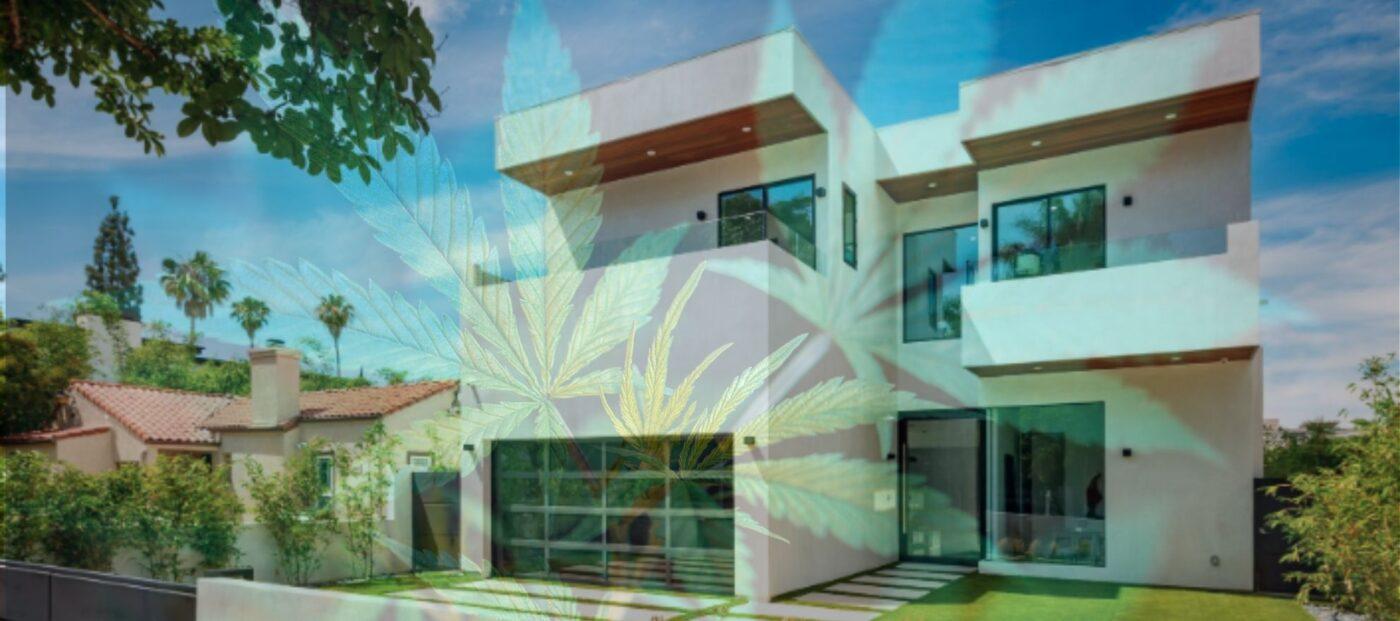 'Cannabis Open House Party' to launch social app Rila