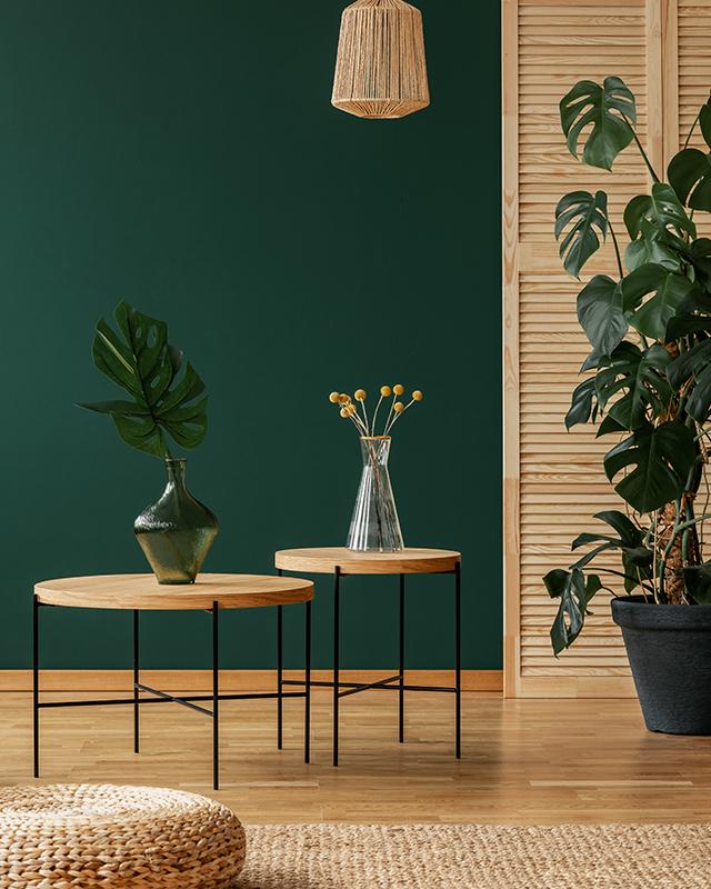 Vibrant green sitting room
