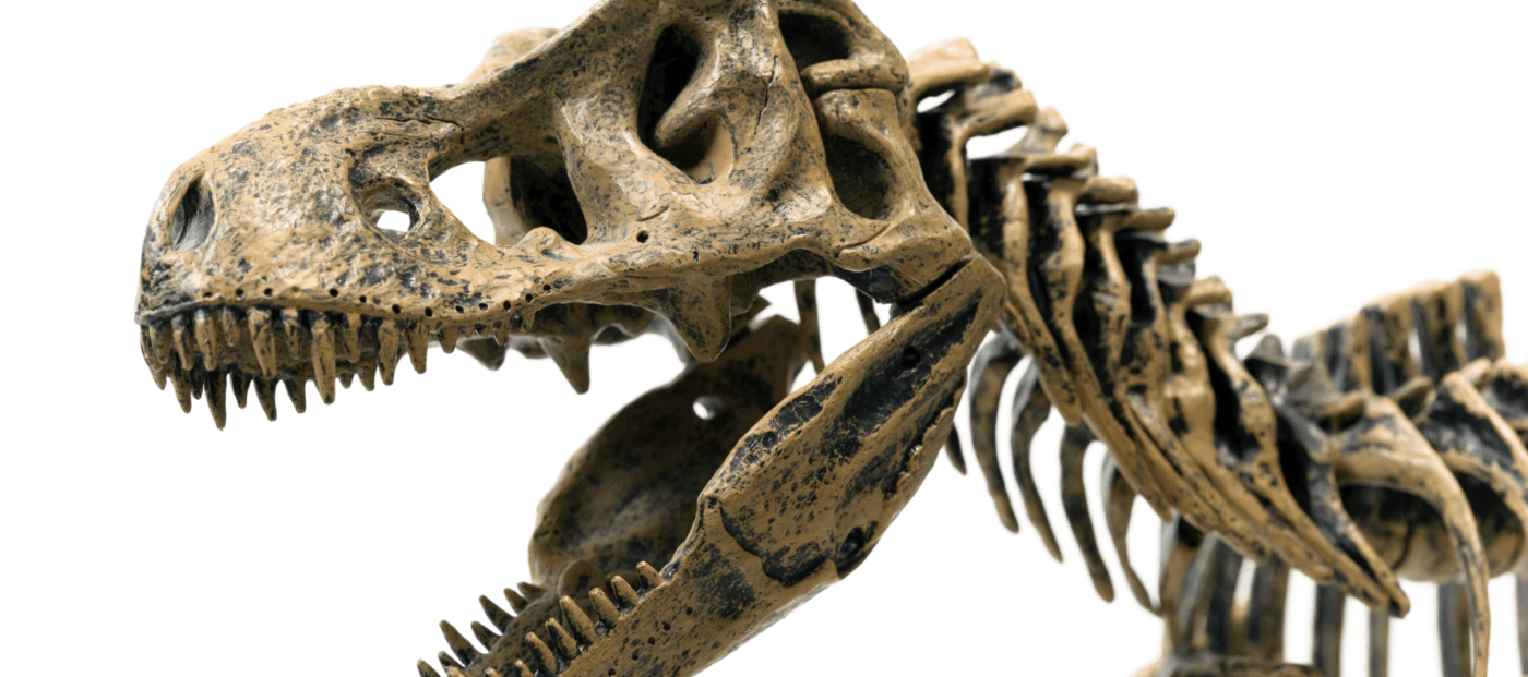 Next big luxury design trend? Think dinosaur fossils