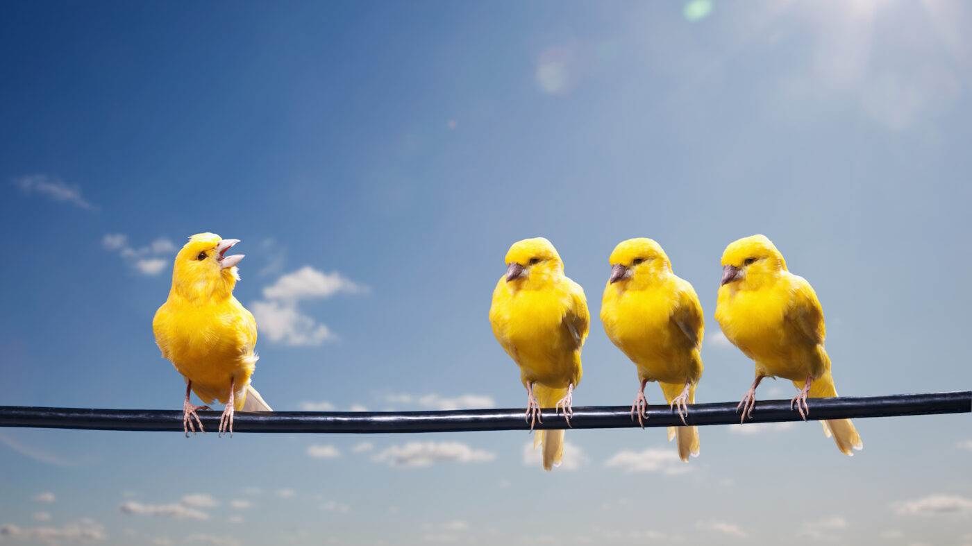 HouseCanary flies away with $65M in latest Series C funding round