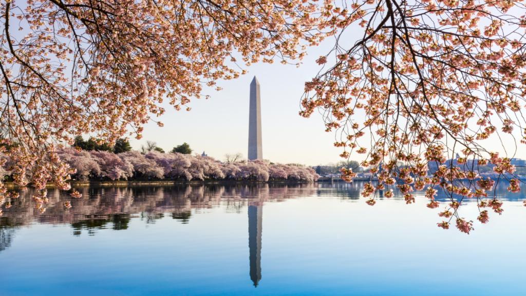 Washington, DC-based C21 franchise launches iBuyer platform