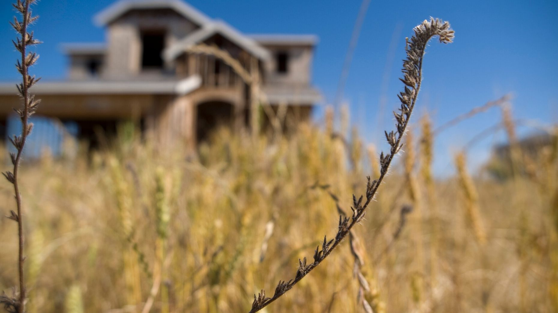 Amid halt on foreclosures, zombie property rate remains constant