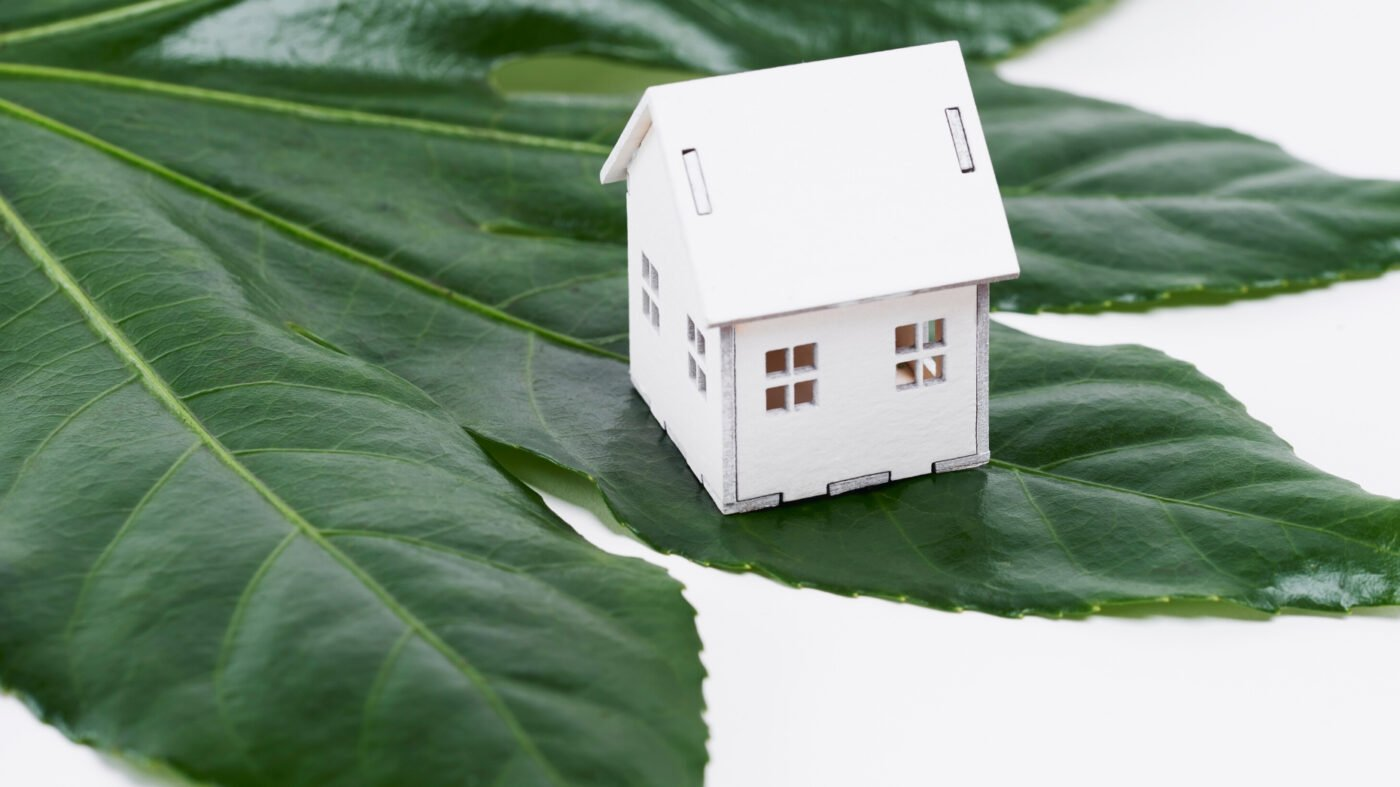 Green is the new black: 3 green living misconceptions debunked