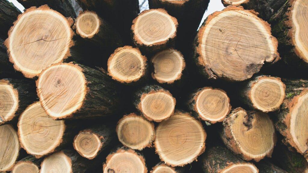 Timber may soon follow lumber in upward price trend