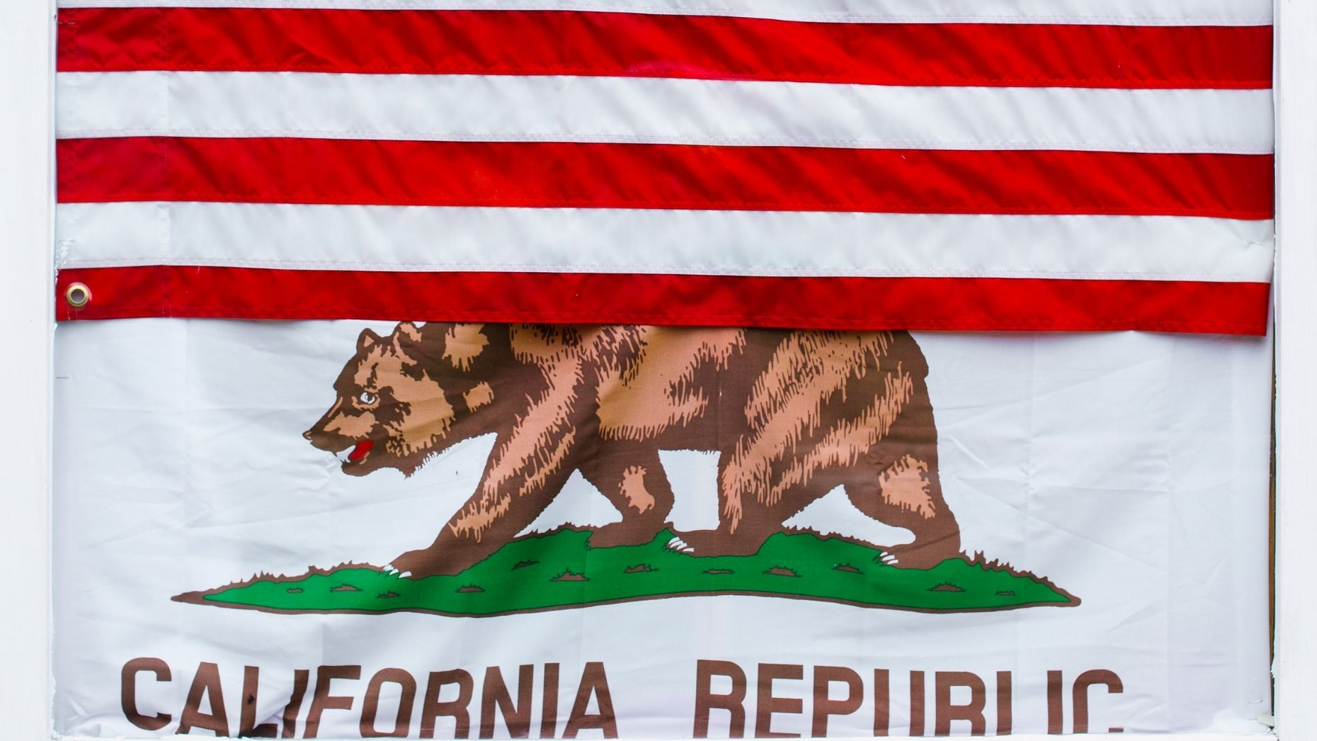 Meet the 2 agents on California's gubernatorial recall election ballot